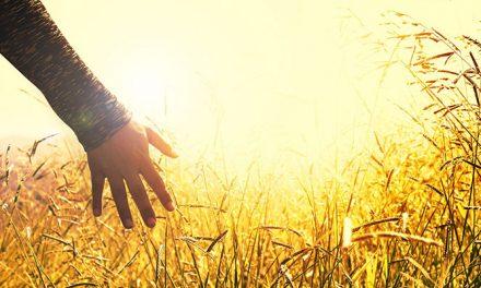 Guarigione spirituale (2)