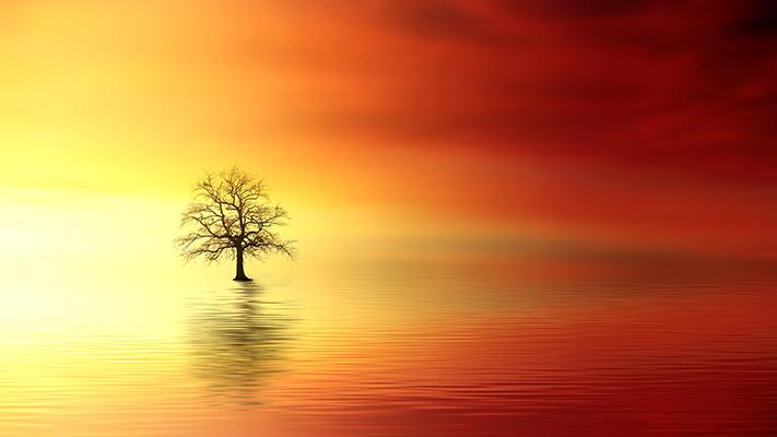 La realtà della realtà spirituale (2). La scommessa della fede