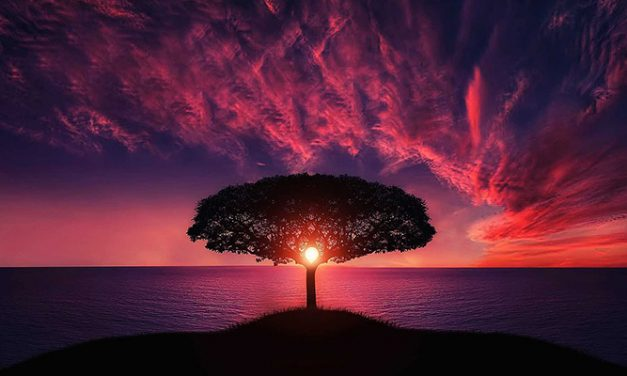 La realtà della realtà spirituale (3). Il salto di Mind3®